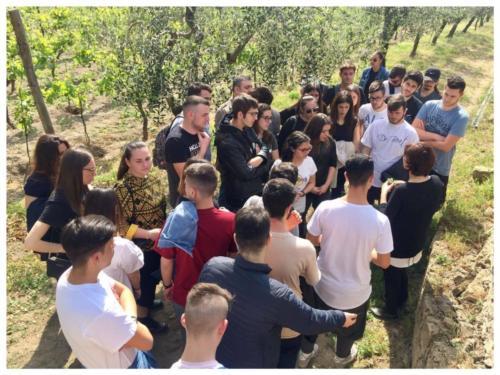 Visita didattica alle Cantine Astroni (14/4/2017)