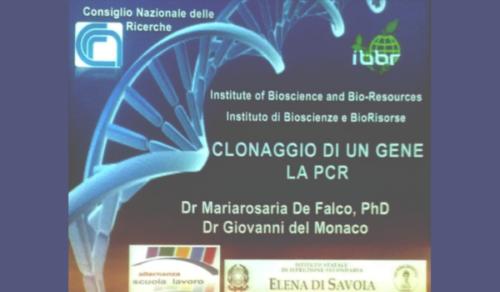 Microbiologia e Biotecnologie - CNR (2/5/2019 - 25/6/2019)
